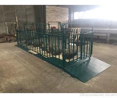 Весы для взвешивания крупного рогатого скота фото