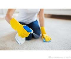 Чистка ковров и паласов фото