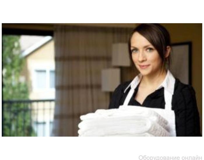 Фото объявления Приходящая домработница в Москве от сервиса «Жена на час»